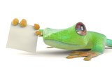 Green tree red eye frog with a blank sign 3d illustration