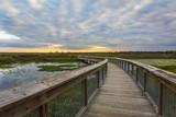 Boardwalk through a wetland - Gainesville, Florida - 129621125