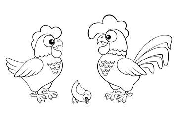 Hen, cock and chick. Black and white vector illustration for coloring book