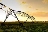 Pivot overhead irrigation