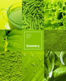 collage with green color