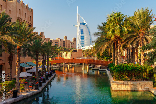 Cityscape with beautiful park with palm trees in Dubai, UAE Poster