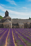 view of Abbey Senanque with lavender at summer day, France