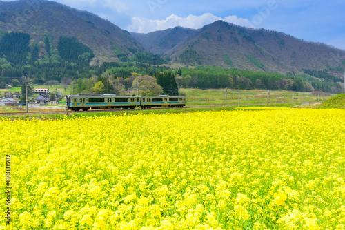 青空の下、田舎を走る日本の鉄道