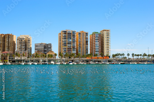 Malaga port with yachts, boats and birds on water