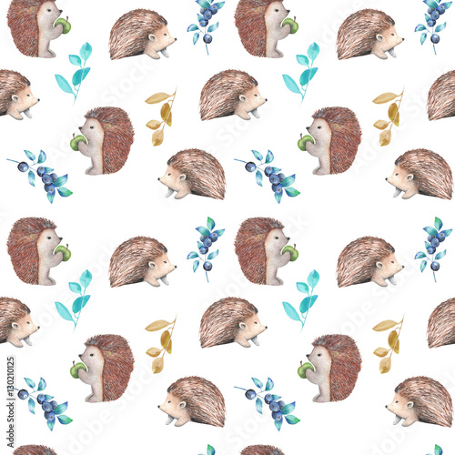 Seamless pattern with watercolor hedgehogs and forest plants, hand drawn isolated on a white background - 130210125