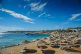 red sea egypt beach sunshade blue sky green water nice view - 130300159
