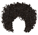 Fototapety trendy curly  african black  hair  . realistic  3d . fashion beauty style .