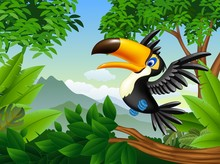Cartoon toucan in the jungle