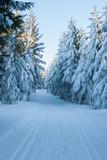 Zimowa droga przez Żmijowiec w Masywie Śnieżnika, Kotlina Kłodzka