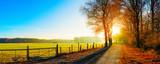 Landschaft im Herbst, Straße neben eine Weide bei Sonnenaufgang - 130537575