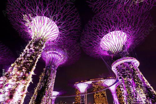 Plagát Giant trees light up in Singapore