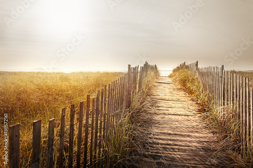 Fenced wooden boardwalk to the beach Plakat