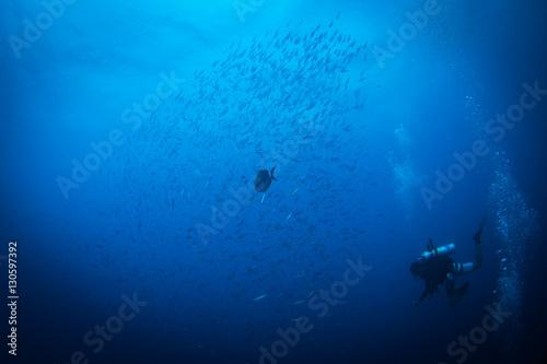 Aluminium Schipbreuk Diver on SS Thistlegorm