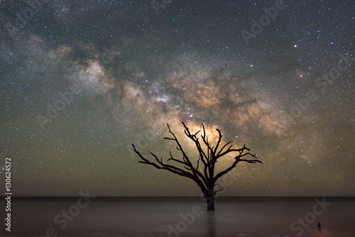 Botany Bay Beach under the  Milky Way Galaxy Poster