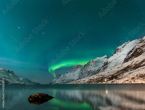 Fotobehang Groen blauw The polar lights in Norway . Ersfjord