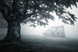 mysterious house in foggy forest - 130659191