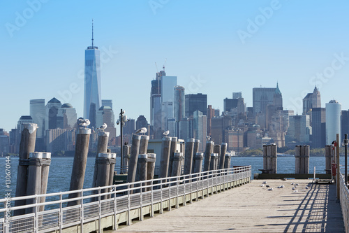 New York city skyline and pier with seagulls in a sunny day Poster