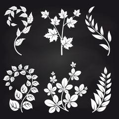 Decorative floral branches on blackboard background vector illustration