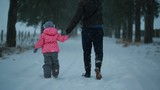 The father and his little daughter walking together holding hands in the park in winter evening