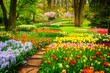 Colourful Tulips Flowerbeds and Stone Path in an Spring Formal Garden, retro toned