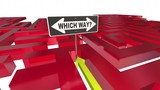 Which Way Choose Decide Path Maze 3d Animation