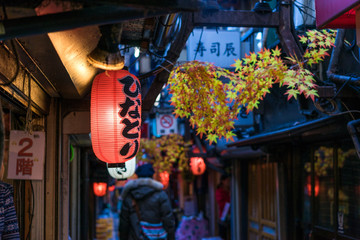 Restaurant street decorated with red leaf in Tokyo