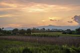 Evening at rural in evening light