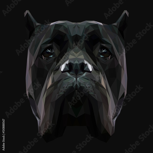 Cane Corso dog animal low poly design. Triangle vector illustration. © shekularaz
