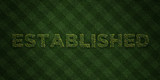 ESTABLISHED - fresh Grass letters with flowers and dandelions - 3D rendered royalty free stock image. Can be used for online banner ads and direct mailers..