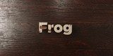 Frog - grungy wooden headline on Maple  - 3D rendered royalty free stock image. This image can be used for an online website banner ad or a print postcard.