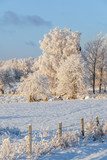 Wintry rural landscape with snow and frost