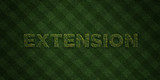 EXTENSION - fresh Grass letters with flowers and dandelions - 3D rendered royalty free stock image. Can be used for online banner ads and direct mailers..