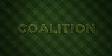 COALITION - fresh Grass letters with flowers and dandelions - 3D rendered royalty free stock image. Can be used for online banner ads and direct mailers..
