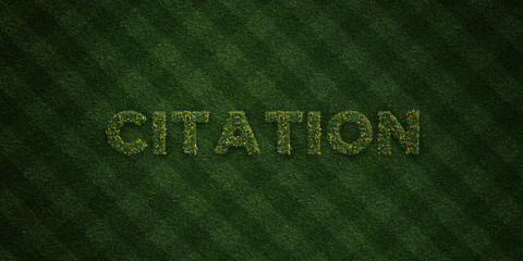 CITATION - fresh Grass letters with flowers and dandelions - 3D rendered royalty free stock image. Can be used for online banner ads and direct mailers..