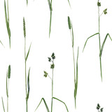 seamless pattern with watercolor grass