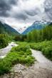 Landscape as seen from Yukon Route Railroad, including Alaskan s
