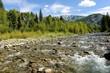 Mountain Creek - Horizontal - A mountain Creek (Anthracite Creek) running along Kebler Pass near Crested Butte, Colorado, USA.
