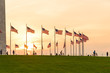 American Flag at the Washington Monument