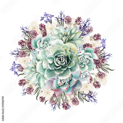 Beautiful watercolor bouquet with succulents and lavender. Blackberries. Illustrations. - 131166709