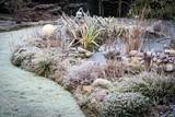 Frost im Garten mit Teich - 131180132