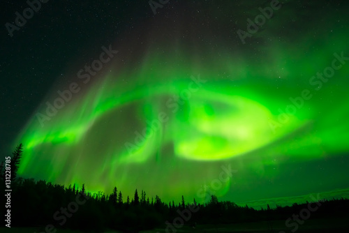 Fotobehang Noorderlicht Green Northern Lights - Strong green aurora borealis spreading in starry night sky over a forest. Yellowknife, NWT, Canada.