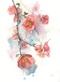 Quince flowers spring tree blooming blossom watercolor painting illustration