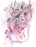 Blooming tree spring blossom sakura watercolor painting illustration