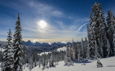 Pacific Northwest Mountain Landscape in Winer