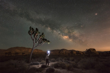 Finding Joshua Tree at night under the Milky Way Galaxy