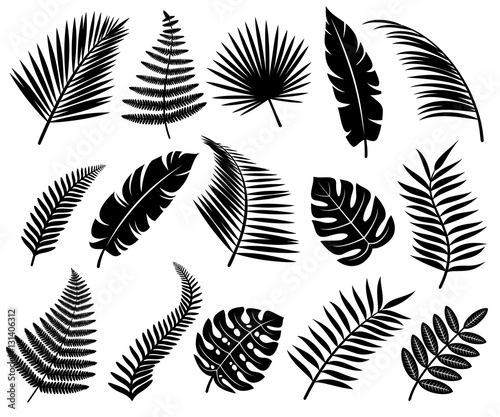 Set of tropical leaves. Vector - 131406312