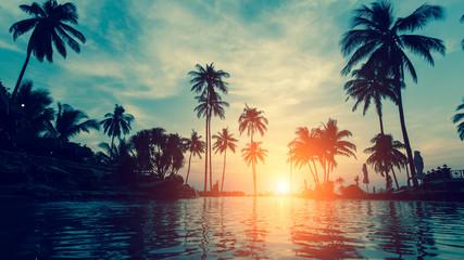 Beautiful tropical beach with palm trees silhouettes at dusk. © De Visu