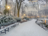 Central Park, New York City snow storm poster
