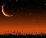 Night sky landscape with silhouette grass and stars on the crescent moon